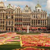 Top 10 Ways to Experience the Culture of Brussels